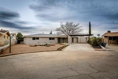 El Paso Single Family Home For Sale: 263 Crown Point Drive