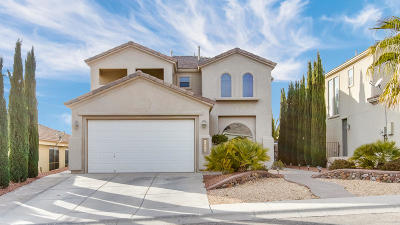 El Paso Single Family Home For Sale: 12239 Sitting Bull Drive