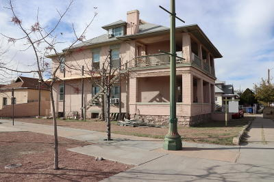 Multi Family Home For Sale: 131 & 141 Newman Street