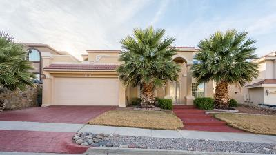 El Paso Single Family Home For Sale: 6316 Franklin View Drive