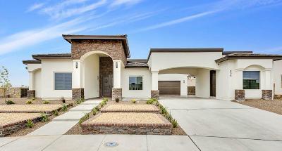 El Paso Single Family Home For Sale: 1316 Franklin Bluff Drive
