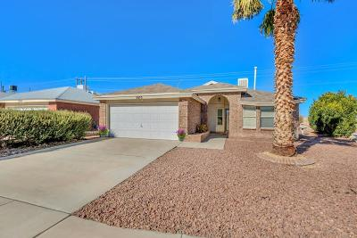 Single Family Home For Sale: 5073 Silver Sands Avenue