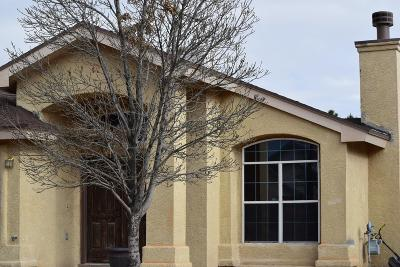 Socorro Single Family Home For Sale: 10773 Valley Dale Road