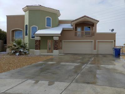 Single Family Home For Sale: 3829 Tierra Roman Drive