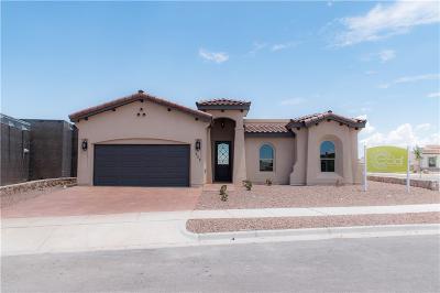 El Paso Single Family Home For Sale: 752 Hertfordshire Street
