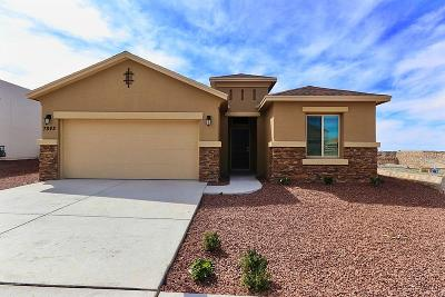 Canutillo Single Family Home For Sale: 7842 Enchanted Ridge Ridge