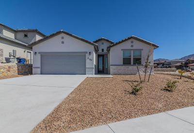 El Paso Single Family Home For Sale: 2155 Enchanted Bridge Drive