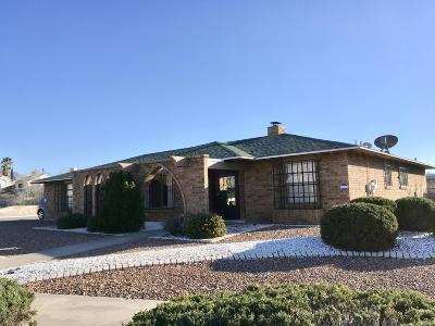 El Paso Single Family Home For Sale: 6700 Pino Real Drive