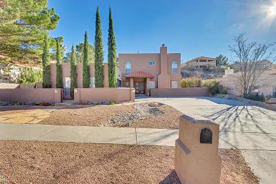 El Paso Single Family Home For Sale: 6408 Loma De Cristo Drive
