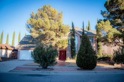 Vista Hills Single Family Home For Sale: 1916 Mary Alice Place