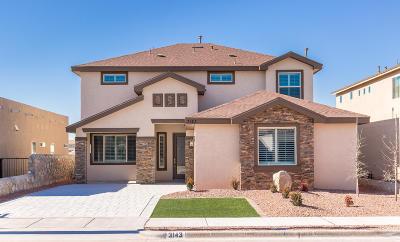 Single Family Home For Sale: 3143 Mocha Freeze Street
