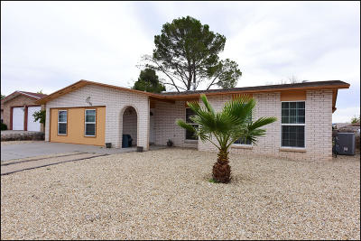 El Paso Single Family Home For Sale: 7736 Iroquois Drive