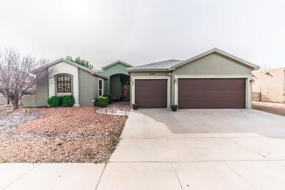 El Paso Single Family Home For Sale: 726 Al Smith Lane