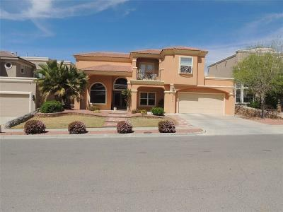 El Paso Single Family Home For Sale: 6363 Franklin View Drive