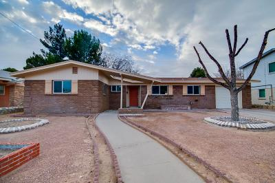 El Paso Single Family Home For Sale: 3227 Shetland Road