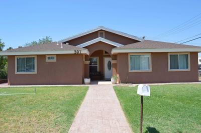 Single Family Home For Sale: 307 Kitt Road