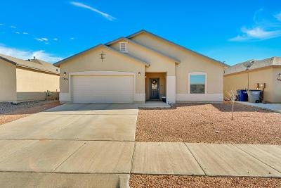 Single Family Home For Sale: 2404 Eastern Sky