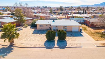 El Paso Single Family Home For Sale: 5208 Danny Drive