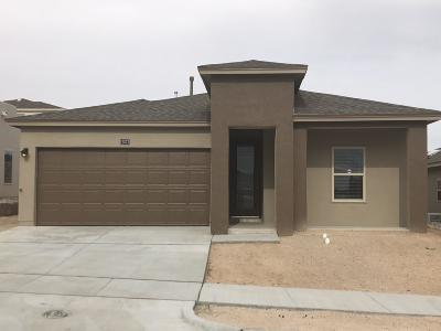 Single Family Home For Sale: 12573 Blue Heron Drive