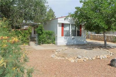 Horizon City Single Family Home For Sale: 149 Desert Mesa Drive