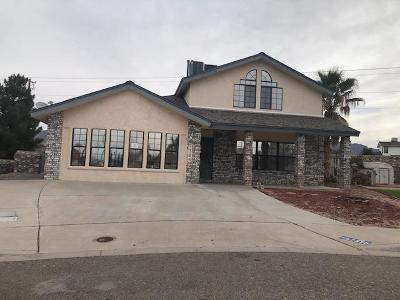 El Paso Single Family Home For Sale: 7325 Desierto Luna Street