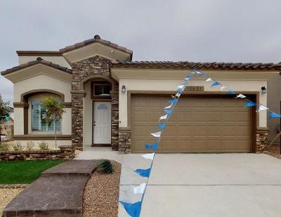 El Paso Single Family Home For Sale: 13749 Newton Court