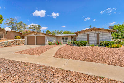 El Paso Single Family Home For Sale: 6865 Granero Drive