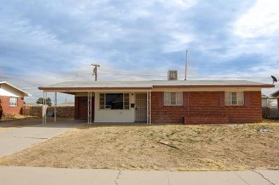 Single Family Home For Sale: 2704 Catnip