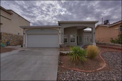 El Paso TX Single Family Home For Sale: $244,000