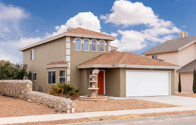 Horizon City Single Family Home For Sale: 424 Cactus Crossing Drive