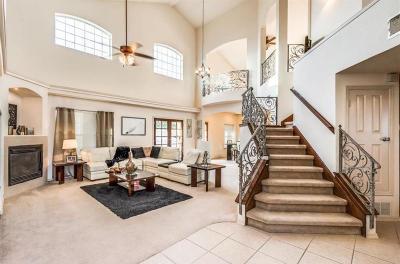 El Paso Single Family Home For Sale: 14153 Robert Ituarte Drive