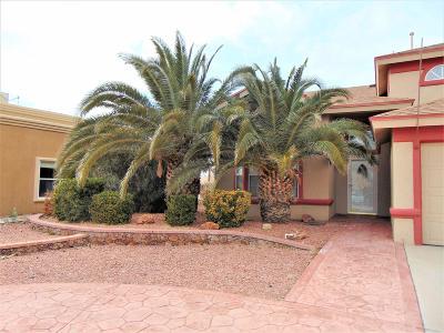 Single Family Home For Sale: 1433 Pedro Figari Avenue