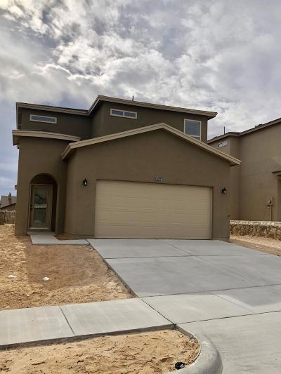 El Paso Single Family Home For Sale: 12588 Arrow Weed Drive