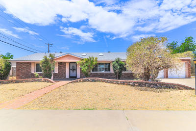 El Paso Single Family Home For Sale: 3303 Cork Drive
