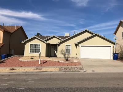 El Paso Single Family Home For Sale: 7105 Black Ridge Drive