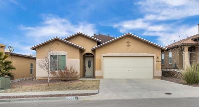 El Paso Single Family Home For Sale: 6909 Inca Dove