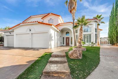 Single Family Home For Sale: 2010 Paseo Del Prado Drive