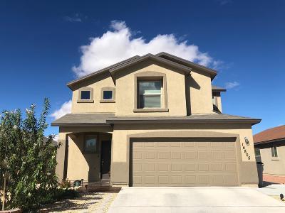 Single Family Home For Sale: 14805 Ava Leigh