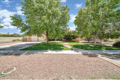 El Paso Single Family Home For Sale: 4516 Lazy Willow Drive