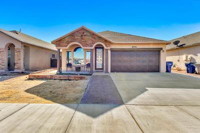 Single Family Home For Sale: 14256 John Scagno