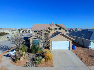 El Paso Single Family Home For Sale: 10898 Northview Drive
