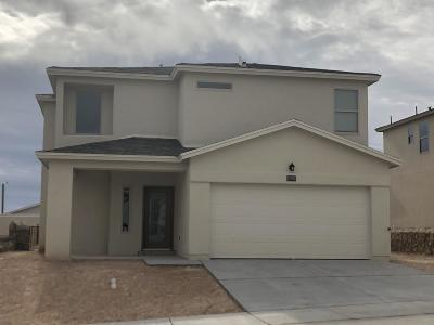 El Paso Single Family Home For Sale: 12568 Arrow Weed Drive