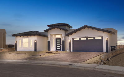 El Paso Single Family Home For Sale: 12498 Chamberlain Drive