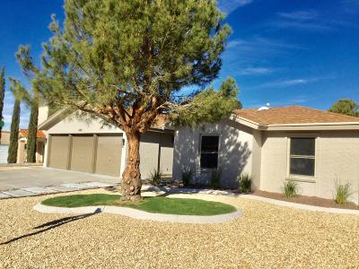 El Paso Single Family Home For Sale: 6421 Loma De Cristo Drive