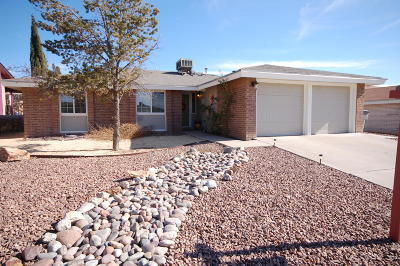 El Paso Single Family Home For Sale: 604 Mary Stuart Drive
