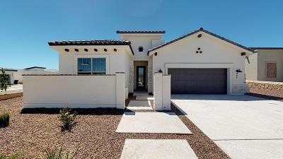 El Paso Single Family Home For Sale: 485 Danby Court