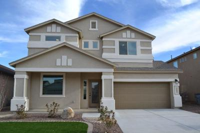 El Paso Single Family Home For Sale: 3116 Red Orchard Drive