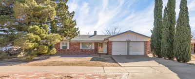 El Paso Single Family Home For Sale: 10552 Greenway Avenue