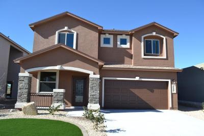 El Paso Single Family Home For Sale: 3159 Mocha Freeze Street