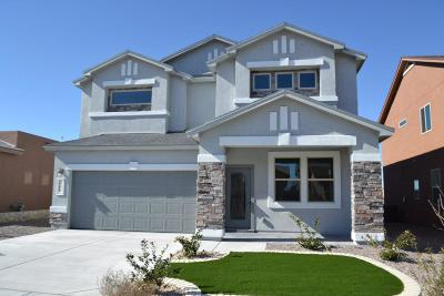 El Paso Single Family Home For Sale: 3155 Mocha Freeze